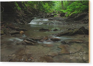 Standing In The Stream Wood Print by Steve Clough