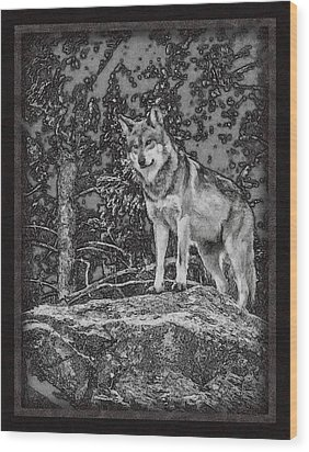 Standing Tall Wood Print by Ernie Echols
