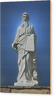 Statue 23 Wood Print by Thomas Woolworth