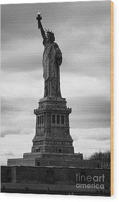 Statue Of Liberty National Monument Liberty Island New York City Wood Print by Joe Fox