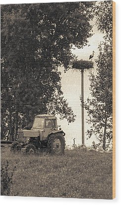 Stork Vs Tractor Wood Print by Yevgeni Kacnelson