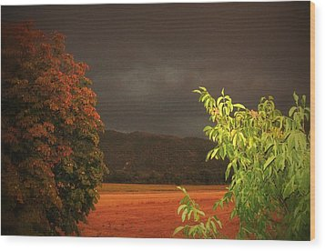 Storm Coming Wood Print by Flow Fitzgerald