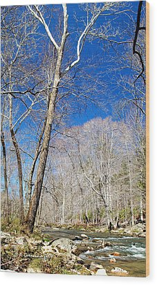 Wood Print featuring the photograph Stream In Spring Montgomery County Pennsylvania by A Gurmankin