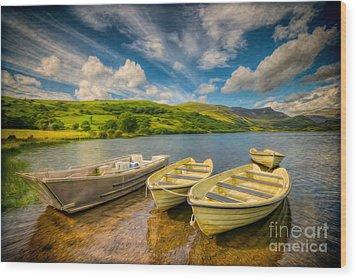 Summer Boating Wood Print by Adrian Evans