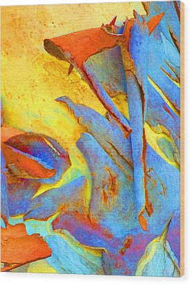 Summer Eucalypt Abstract 29 Wood Print by Margaret Saheed
