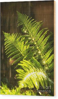 Summer Rain Wood Print by Jane Rix