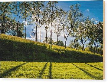 Sun Shining Through Trees And Shadows On The Grass At Antietam National Battlefield Maryland Wood Print by Jon Bilous