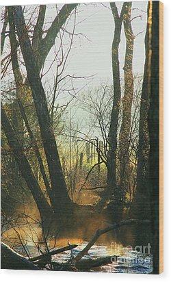 Sun Splash Wood Print by Douglas Stucky