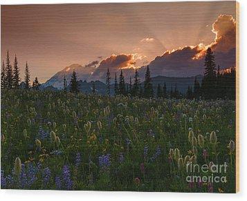 Sunbeam Garden Wood Print by Mike  Dawson