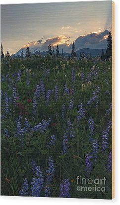 Sunbeams Over Rainier Wood Print by Mike  Dawson
