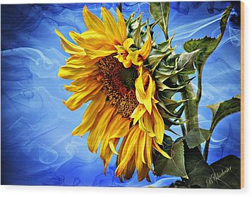 Sunflower Fantasy Wood Print by Barbara Chichester
