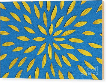 Sunflower Petals Pattern Wood Print by Tim Gainey
