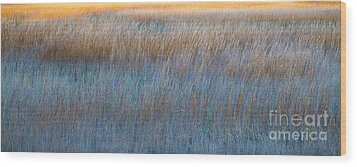 Sunset Marsh In Blue And Gold Wood Print by Jo Ann Tomaselli
