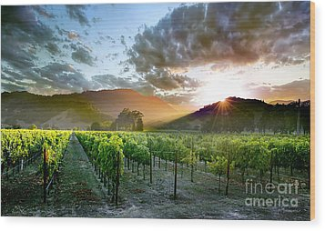 Wine Country Wood Print by Jon Neidert