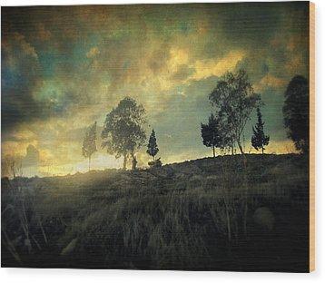 Sunset Trip II Wood Print by Taylan Apukovska