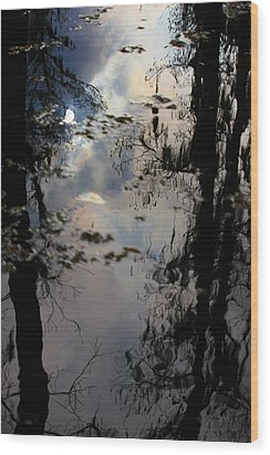 Sunshadow Wood Print by Rdr Creative