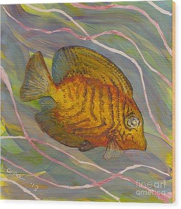 Surgeonfish Wood Print by Anna Skaradzinska