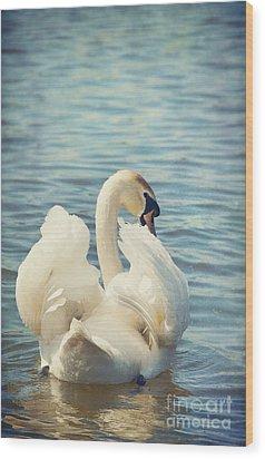 Swan Wood Print by Svetlana Sewell