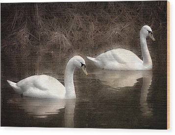Swans For Life Wood Print by Jason Green