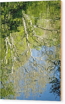 Wood Print featuring the photograph Sycamore Trees Reflected In A Stream by A Gurmankin