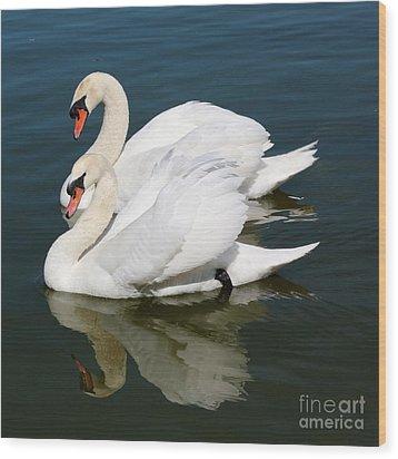 Synchronized Swans Wood Print by Carol Groenen