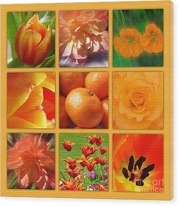 Tangerine Dream Window Wood Print by Joan-Violet Stretch