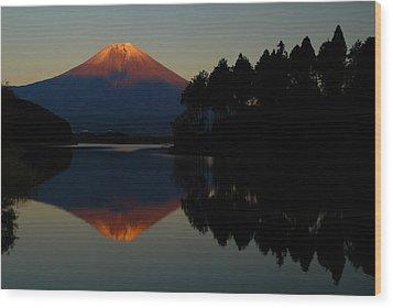 Tanukiko Fuji Wood Print by Aaron S Bedell
