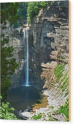Taughannock Falls Wood Print by Christina Rollo