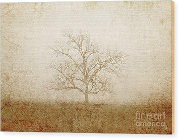 Test Of Time Wood Print by Scott Pellegrin