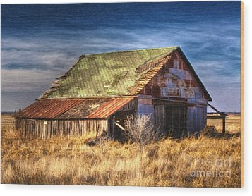 Texas Barn 1 Wood Print by DS Dodd