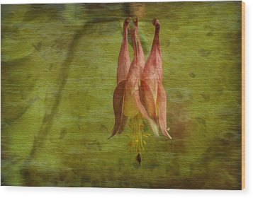Textures Of Nature 2 Wood Print by Jack Zulli
