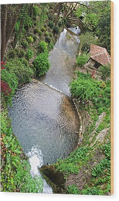 The Artificial River From Balchik Botanical Garden Wood Print by Cristina-Velina Ion