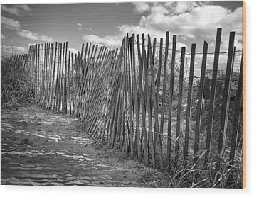 The Beach Fence Wood Print by Scott Norris