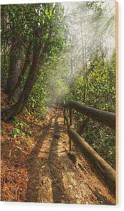 The Benton Trail Wood Print by Debra and Dave Vanderlaan