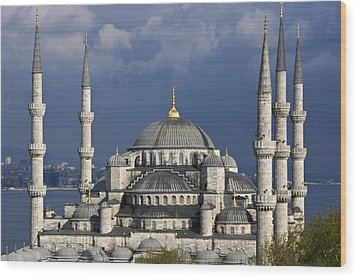 The Blue Mosque In Istanbul Wood Print by Michele Burgess