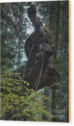 The Centaur Wood Print by Belinda Greb