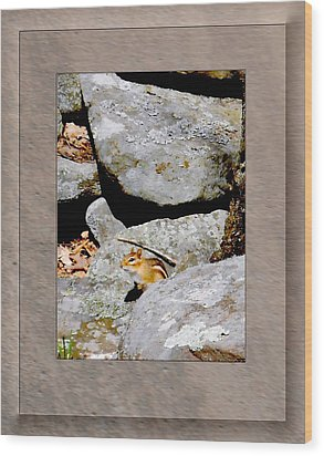 The Chipmunk Wood Print by Patricia Keller