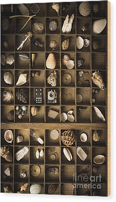 The Collection Wood Print by Edward Fielding