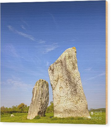 The Cove Avebury Wiltshire Wood Print by Colin and Linda McKie