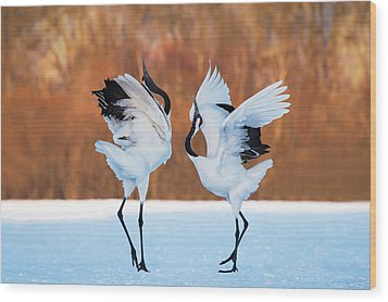 The Dance Of Love Wood Print by C. Mei