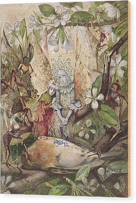 The Death Of Cock Robin Wood Print by John Anster Fitzgerald