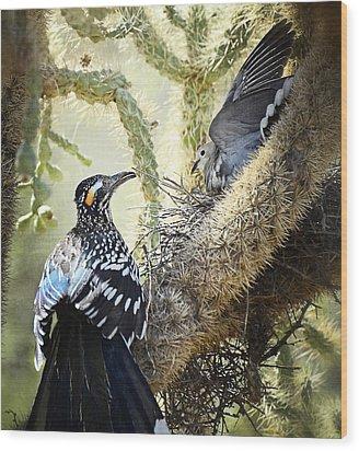 The Dove Vs. The Roadrunner Wood Print by Saija  Lehtonen