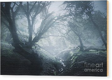 The Ents Are Going To War Wood Print by Kyle Walker