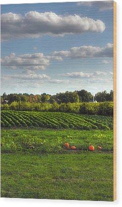 The Farm Wood Print by Joann Vitali
