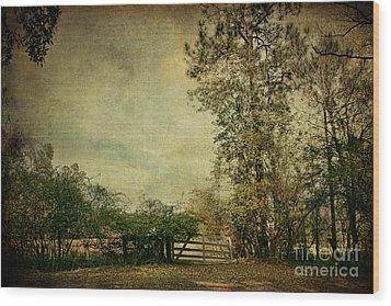The Gate Wood Print by Joan McCool