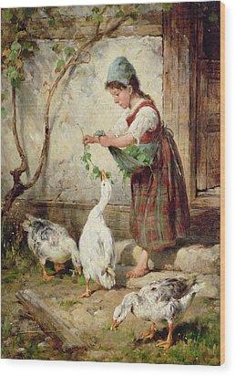 The Goose Girl Wood Print by Antonio Montemezzano
