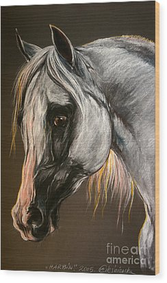 The Grey Arabian Horse Wood Print by Angel  Tarantella