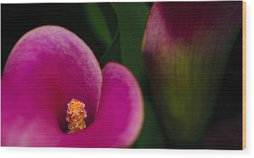 The Heart Of The Lily Wood Print by Christi Kraft