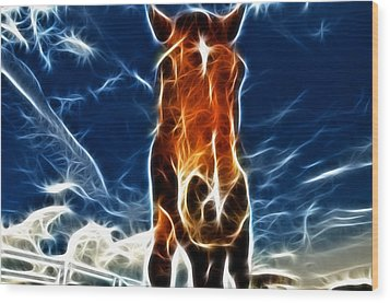 The Horse Wood Print by Paul Ward