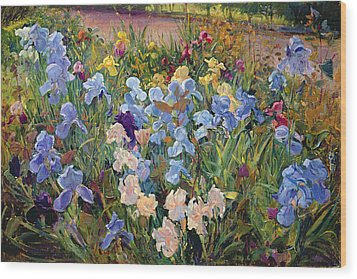 The Iris Bed Wood Print by Timothy Easton